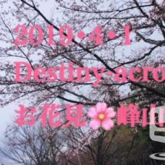 2019・4・1  花見•峰山公園