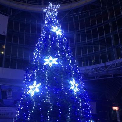 今日の一枚 クリスマス ツリー イベント