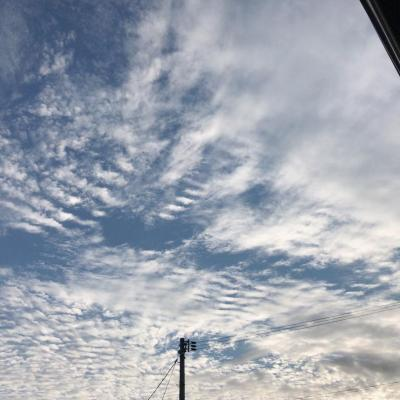 今日の一枚 嬉しい♪ 香川最強 うどん県 いいね! ゼッタイ最強