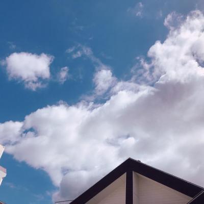 今日の一枚 ビックリ いい天気! 2021 マスク マンボウ
